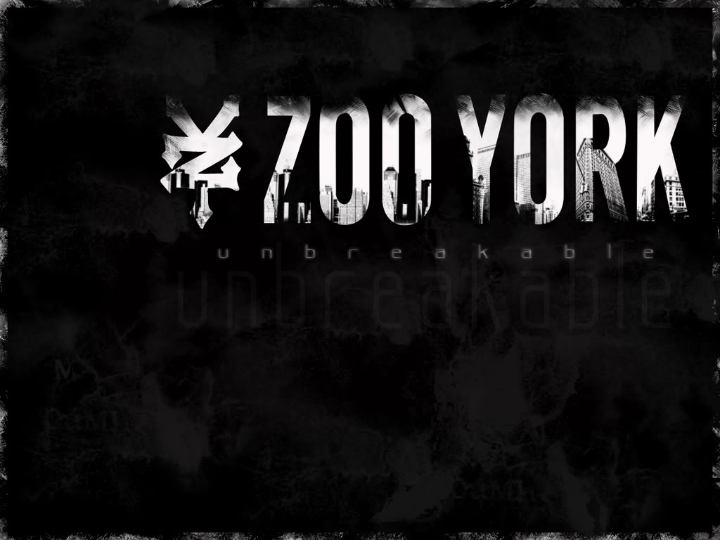 Zoo York Logo Skateboars Image Picture HD Wallpapers