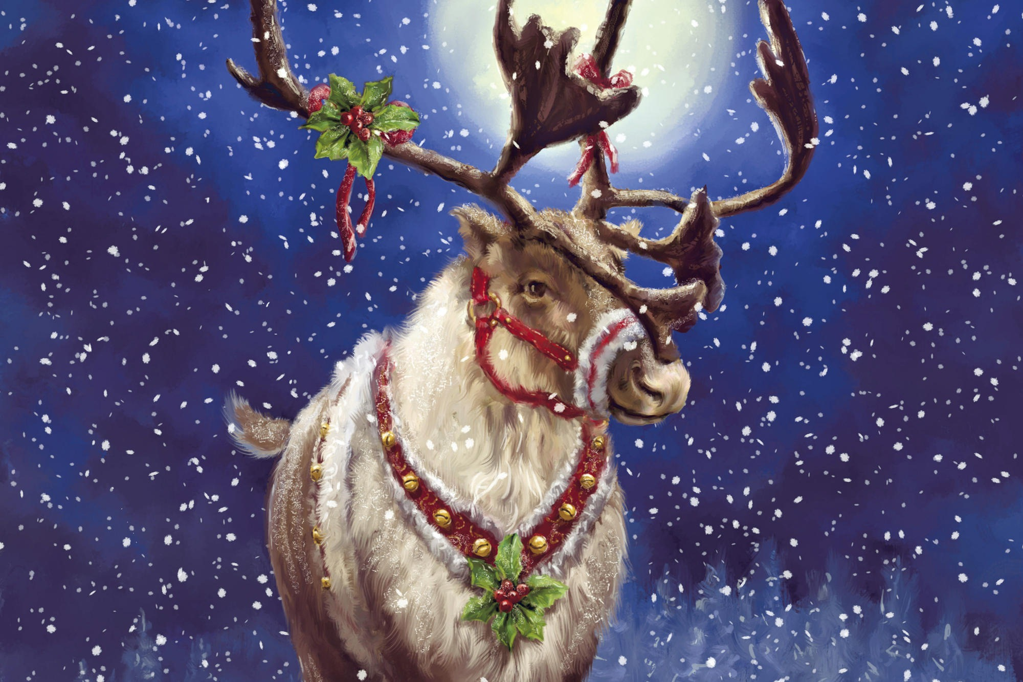 Christmas Reindeer Pictures Wallpapers HD free Download