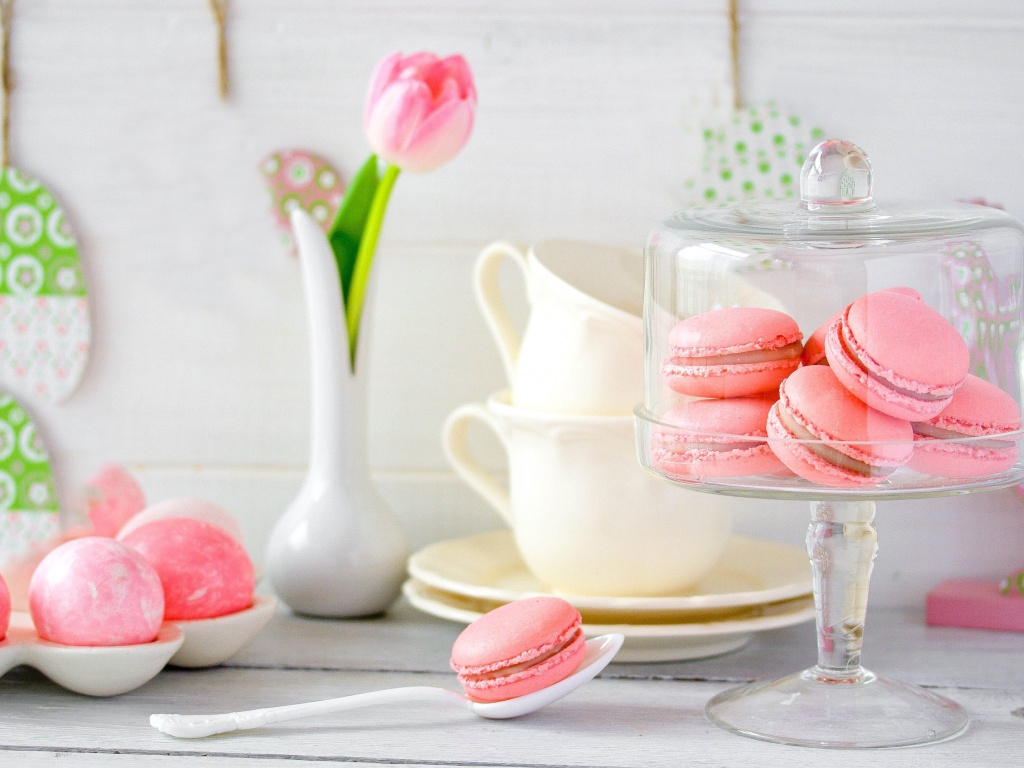 Macarons Rose Beauty Food Image Picture Gallery HD Wallpapers 1024x768px Free