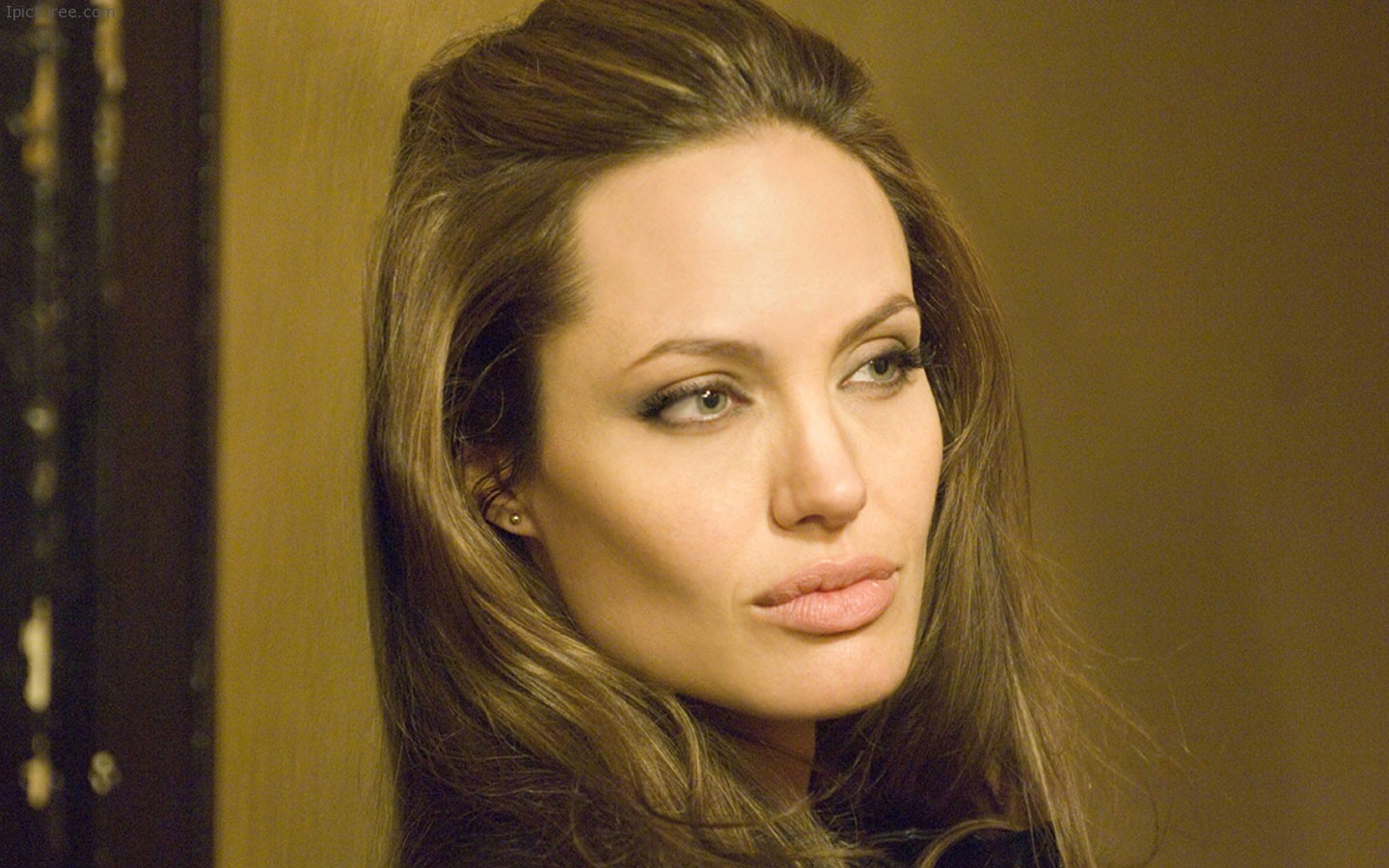 Beautiful Angelina Jolie Wallpaper