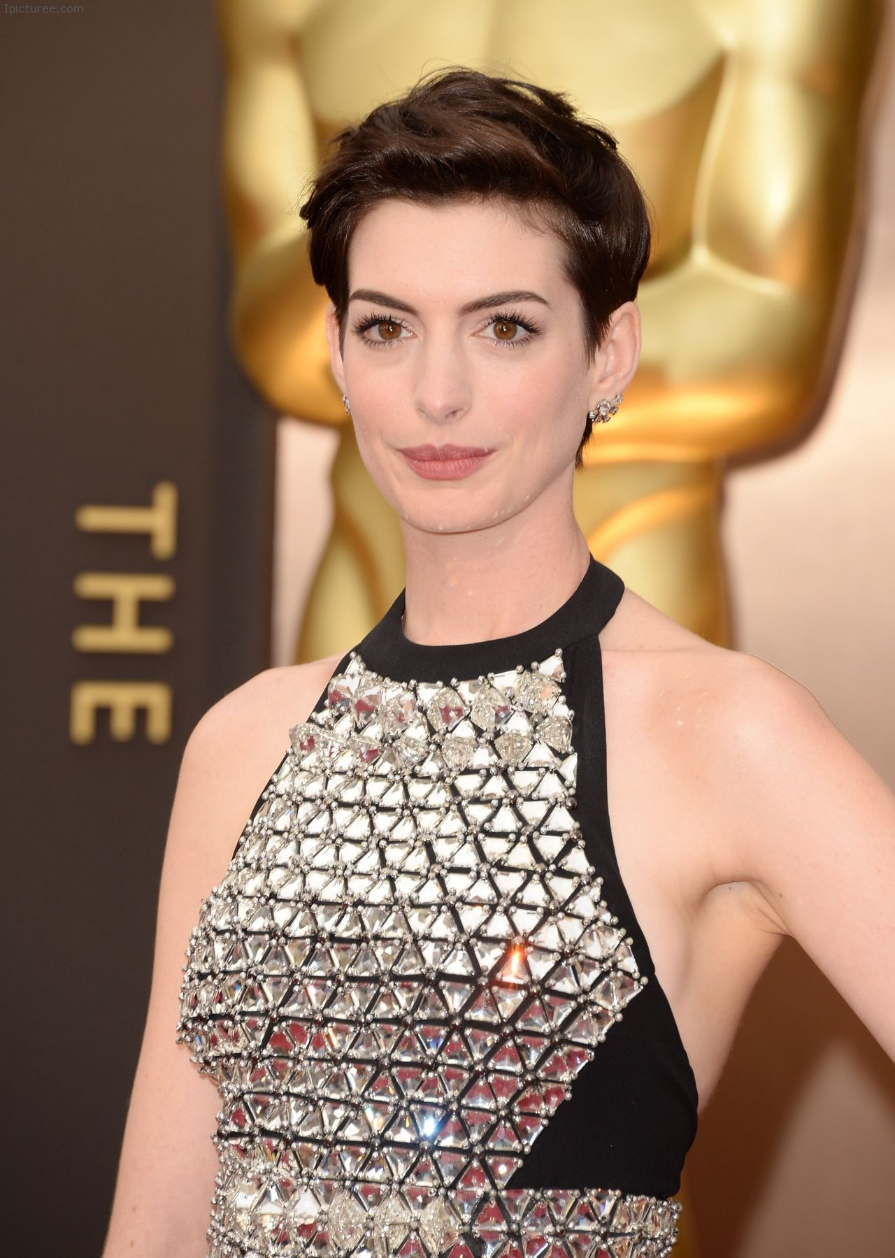 co jewels at 2014 oscars anne hathaway 2014 hollywood stands up