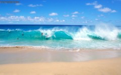 Sunny Beach Ocean Surf Wallpaper