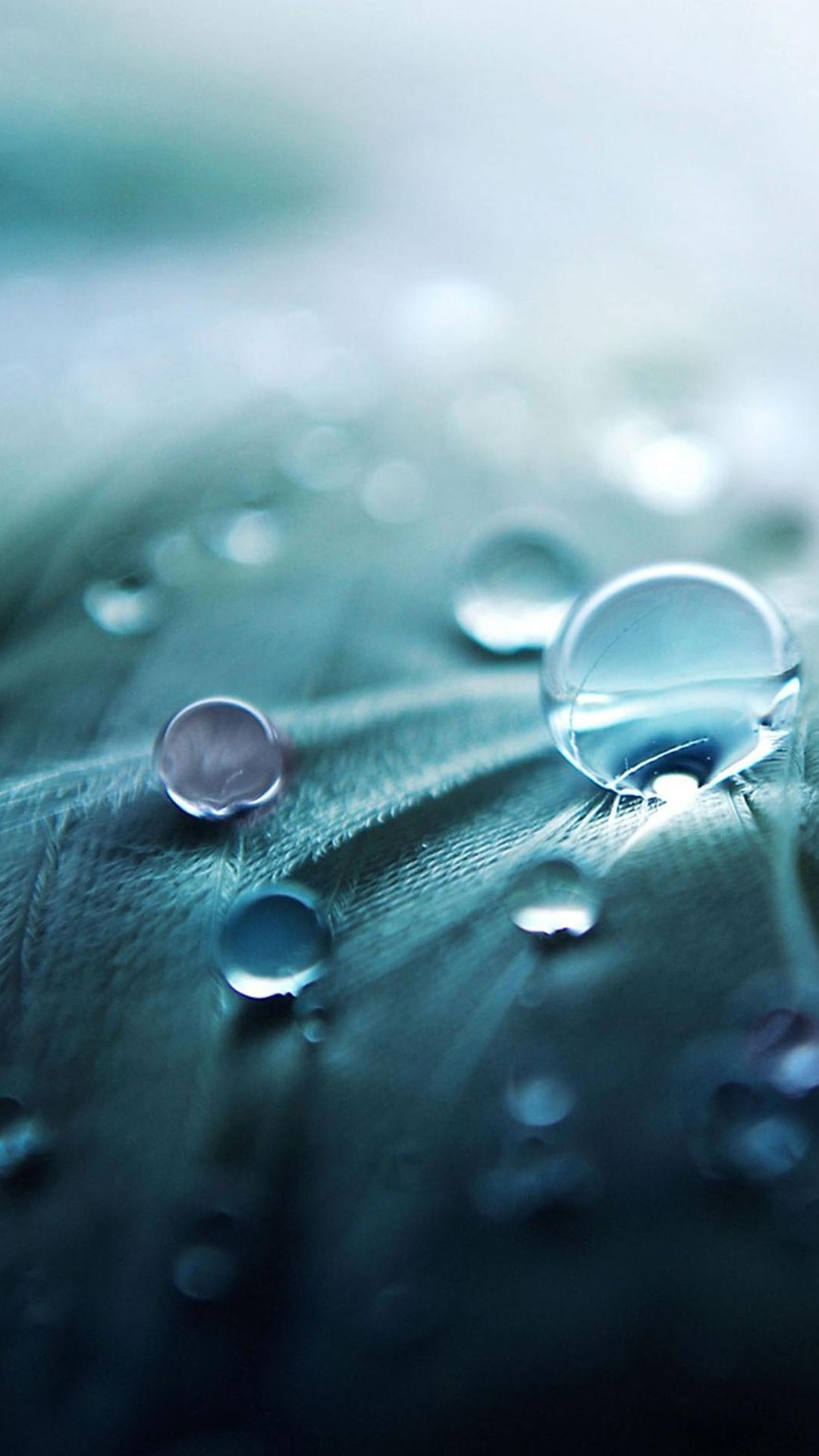 Water Droplets iPhone 6 and iPhone 6 Plus HD Wallpaper