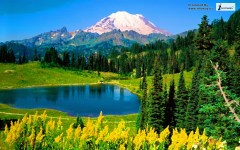beautiful lush green mountain scenery
